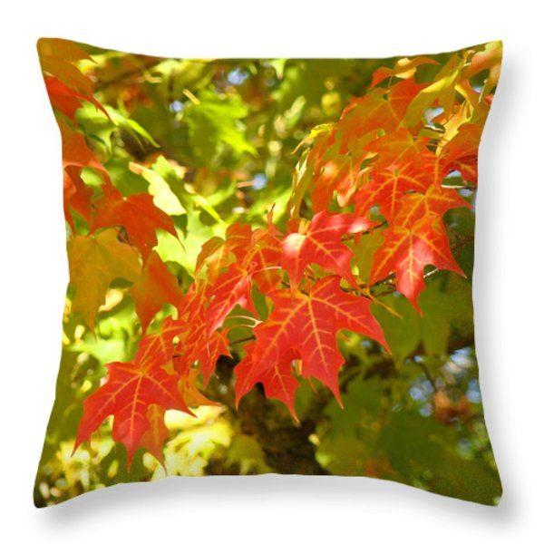 Colorful Fall Leaves Red Nature Landscape Baslee Troutman Throw Pillow by Baslee Troutman