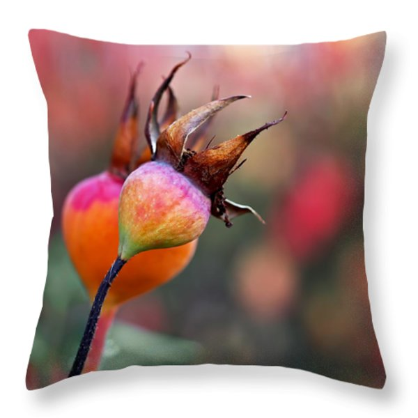 Colorful Rose Hips Throw Pillow by Rona Black