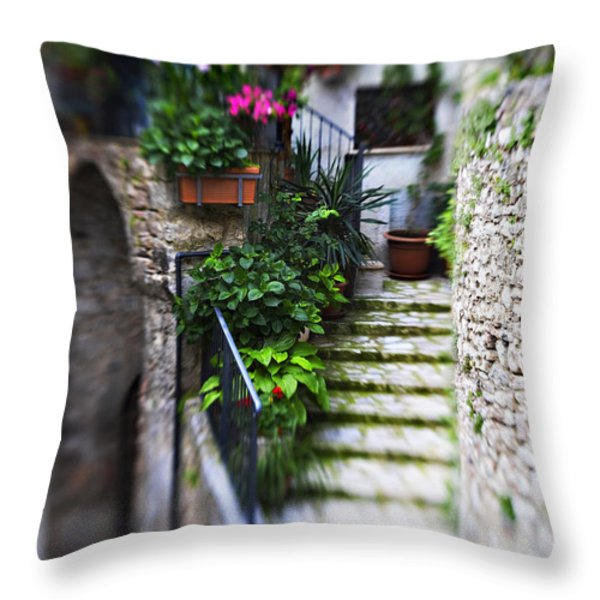 Coming Home Throw Pillow by Marilyn Hunt