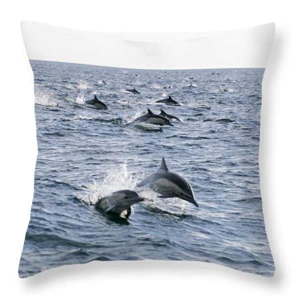 Common Dolphin Delphinus Delphis Pod Throw Pillow by Rich Reid