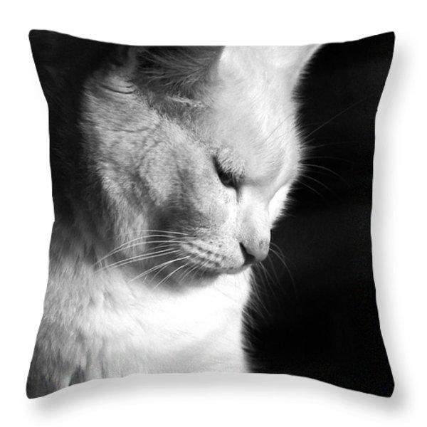 Contempation  Throw Pillow by Bob Orsillo