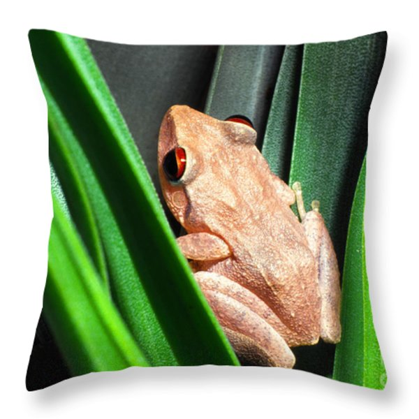 Coqui in Bromeliad Throw Pillow by Thomas R Fletcher