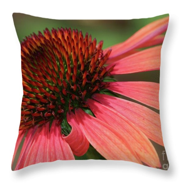 Coral Cone Flower Throw Pillow by Sabrina L Ryan