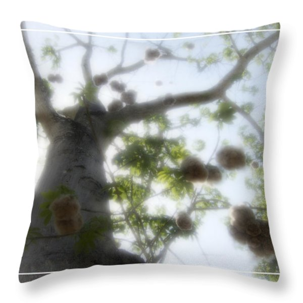 Cotton Ball Tree Throw Pillow by Douglas Barnard