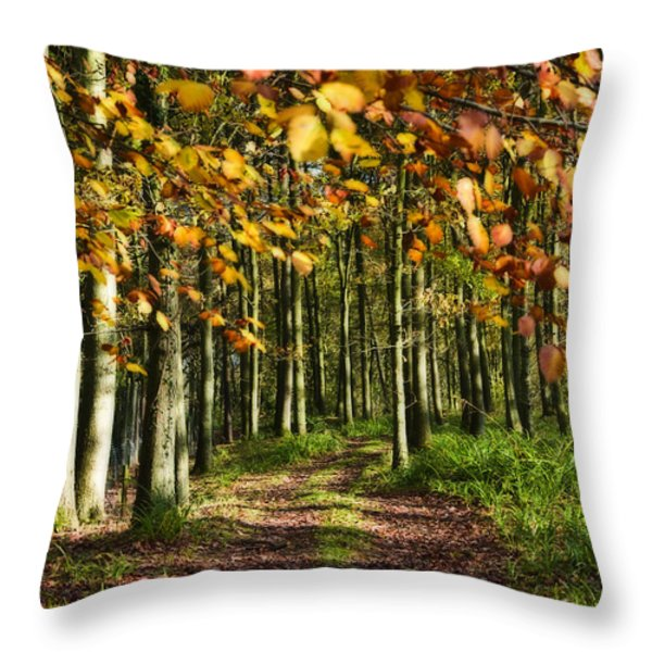 Country Road Throw Pillow by Svetlana Sewell