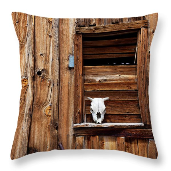 Cow skull in wooden window Throw Pillow by Garry Gay