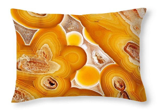 Coyamito  Throw Pillow by Bill Morgenstern