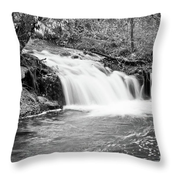 Creek Merge Waterfall in Black and White Throw Pillow by James BO  Insogna