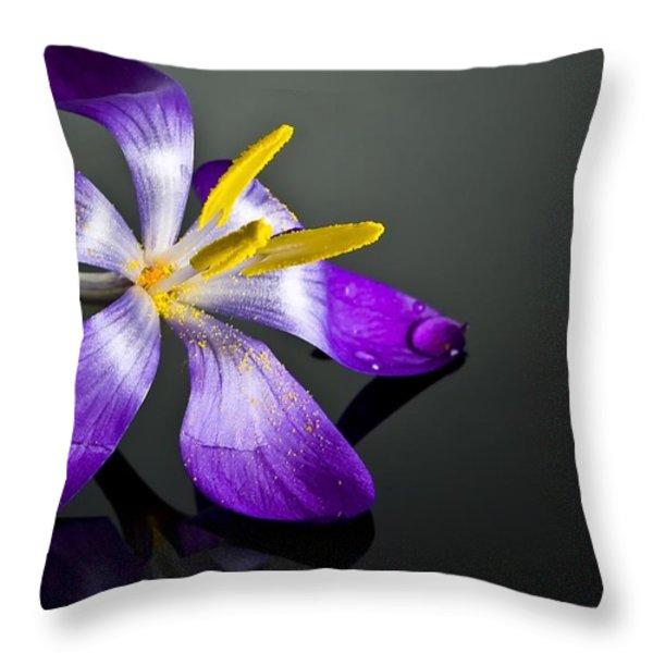 Crocus Throw Pillow by Svetlana Sewell