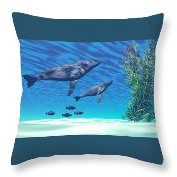Crystal Clear Throw Pillow by Corey Ford