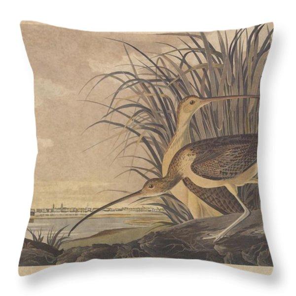 Curlew Throw Pillow by John James Audubon