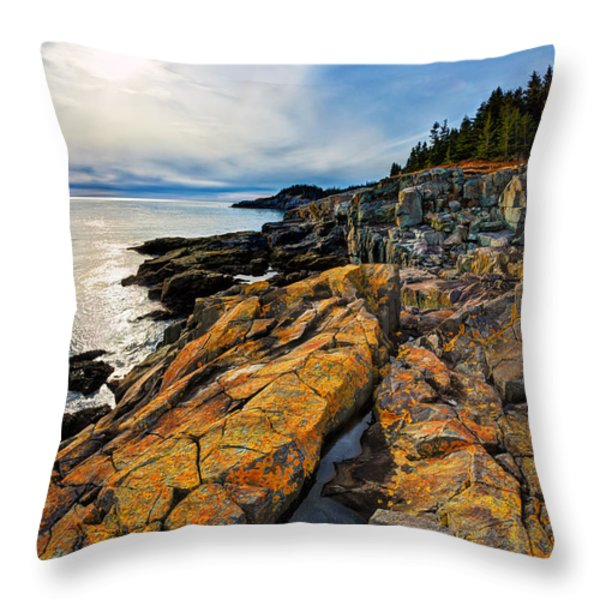 Cutler Coast Lichen Throw Pillow by Bill Caldwell -        ABeautifulSky Photography
