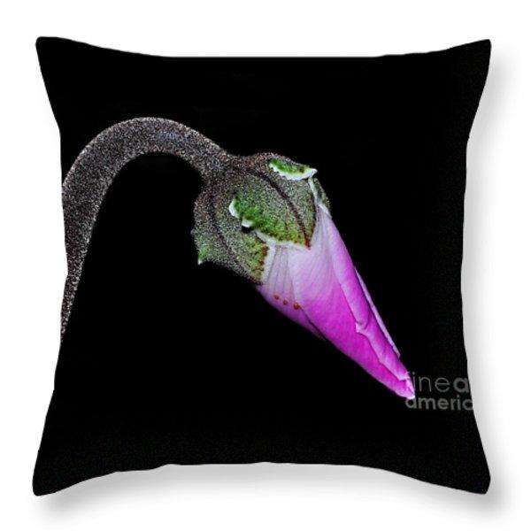 Cyclamen Bud Macro Throw Pillow by Kaye Menner