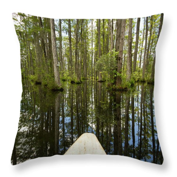 Cypress Garden Swamp Throw Pillow by Dustin K Ryan