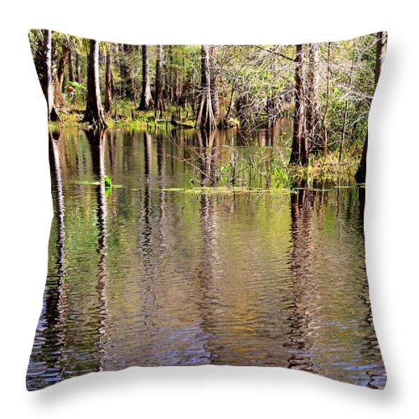 Cypress Trees along the Hillsborough River Throw Pillow by Carol Groenen