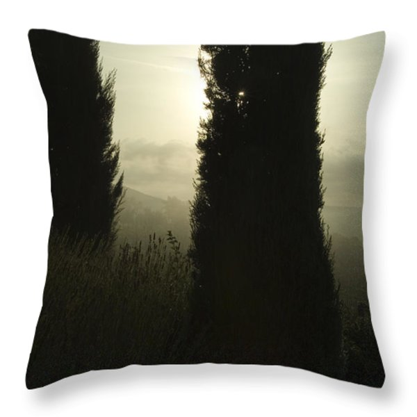 Cypress Trees Looming In Front Throw Pillow by Todd Gipstein