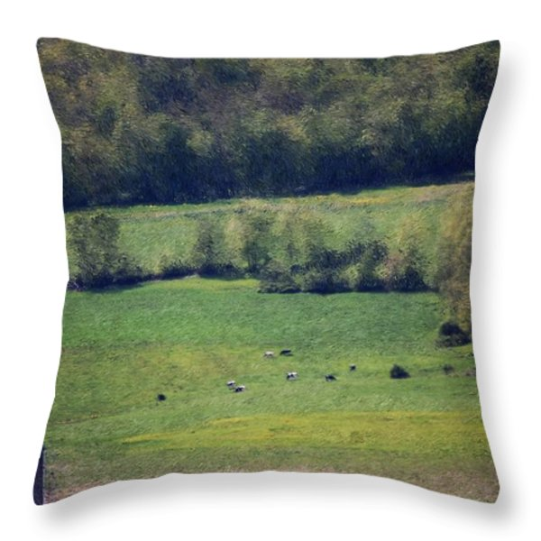 Dairy Farm In The Finger Lakes Throw Pillow by David Lane