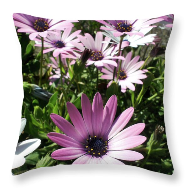 Daisy Patch Throw Pillow by Kaye Menner