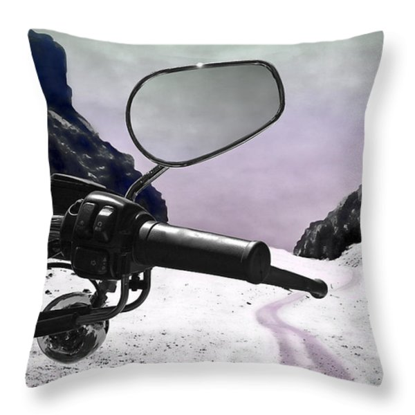 Daredevil Throw Pillow by Evelina Kremsdorf