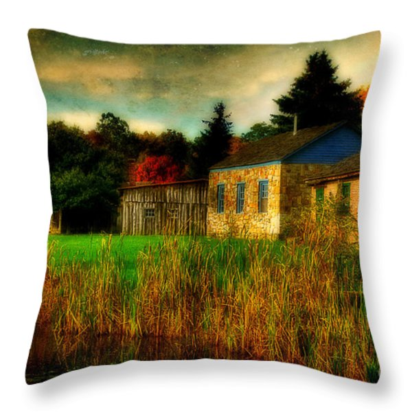 Day Is Done Throw Pillow by Lois Bryan