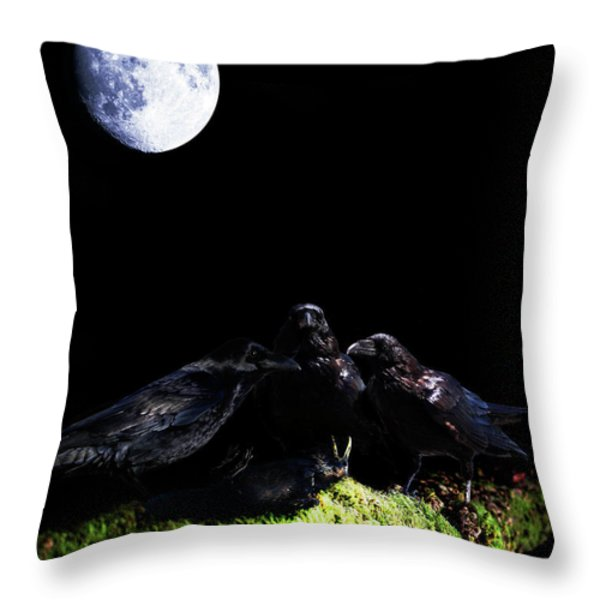 Death of a Young Raven Throw Pillow by Wingsdomain Art and Photography