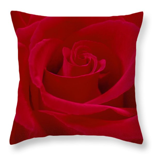 Deep Red Rose Throw Pillow by Mike McGlothlen