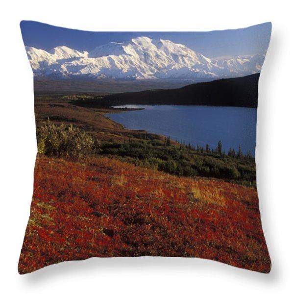 Denali Evening Throw Pillow by Sandra Bronstein