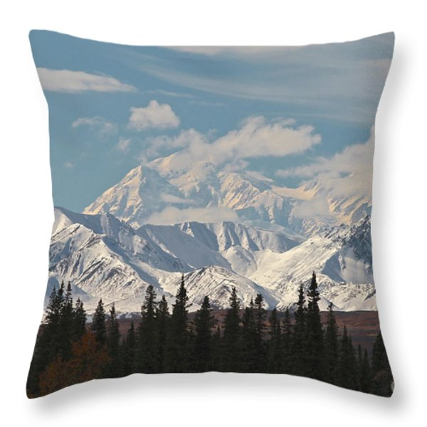 Denali In Broad Pass Throw Pillow by Donna Quante