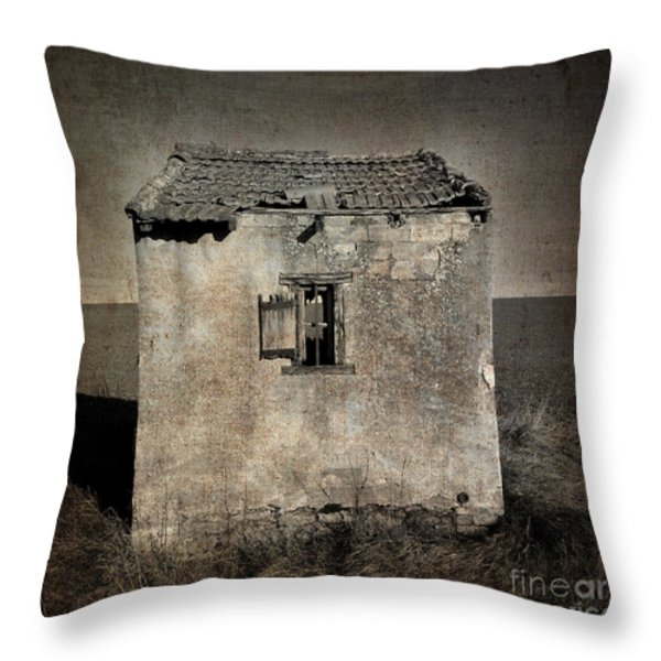 Derelict hut  textured Throw Pillow by BERNARD JAUBERT