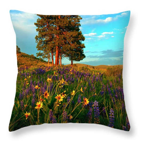 Desert Pines Meadow Throw Pillow by Mike  Dawson