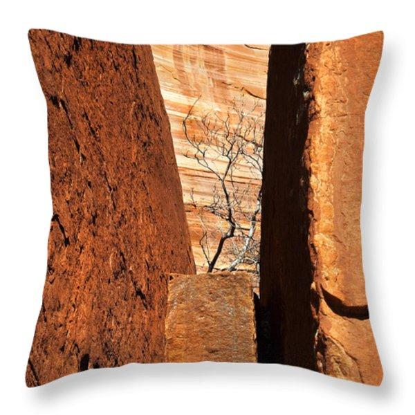 Desert Vise Throw Pillow by Mike  Dawson