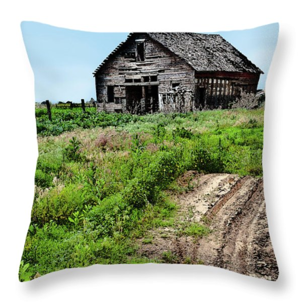 Desolate Throw Pillow by Betty LaRue