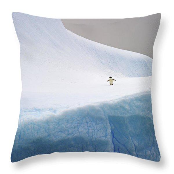 Desolation... Throw Pillow by Nina Stavlund