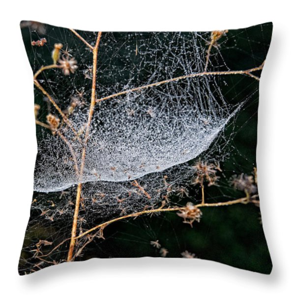Dew Drenched Throw Pillow by Christopher Holmes