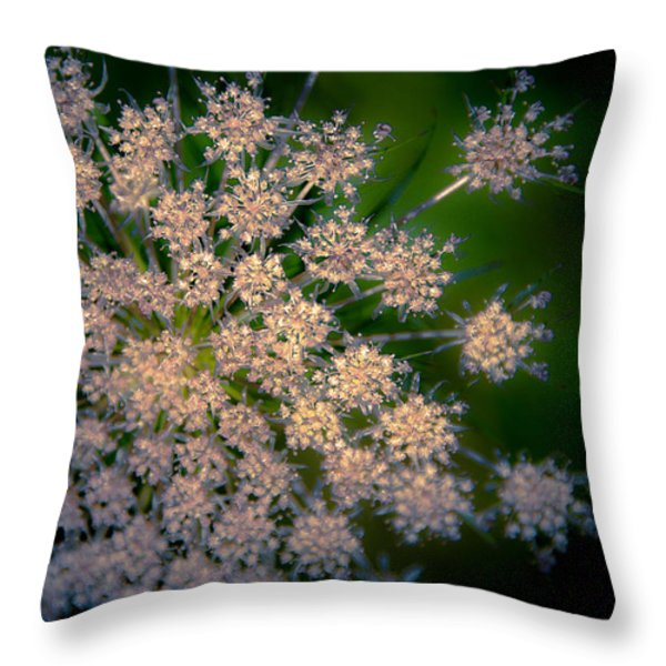 Diamonds Are Forever Throw Pillow by Loriental Photography