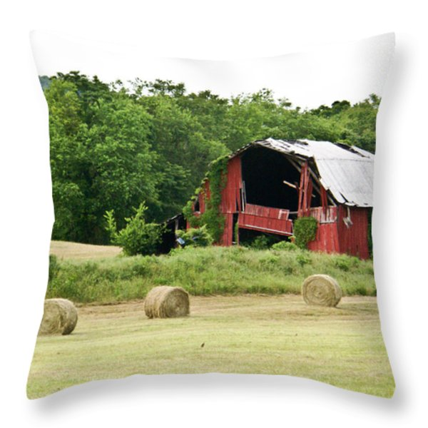 Dilapidated Old Red Barn Throw Pillow by Douglas Barnett