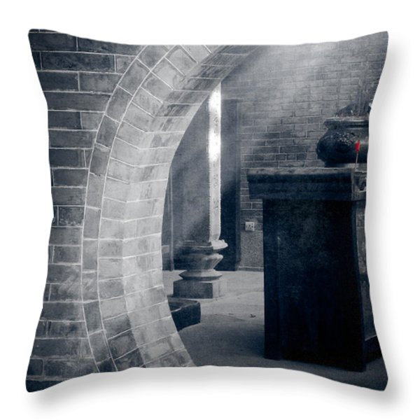 Divine Light Throw Pillow by Loriental Photography