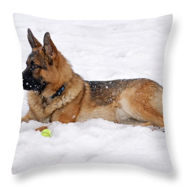 Dog in Snow Throw Pillow by Sandy Keeton
