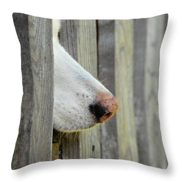 Dog Nose Throw Pillow by Joye Ardyn Durham