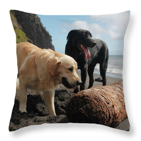 Dogs Playing At The Beach Throw Pillow by Gaspar Avila