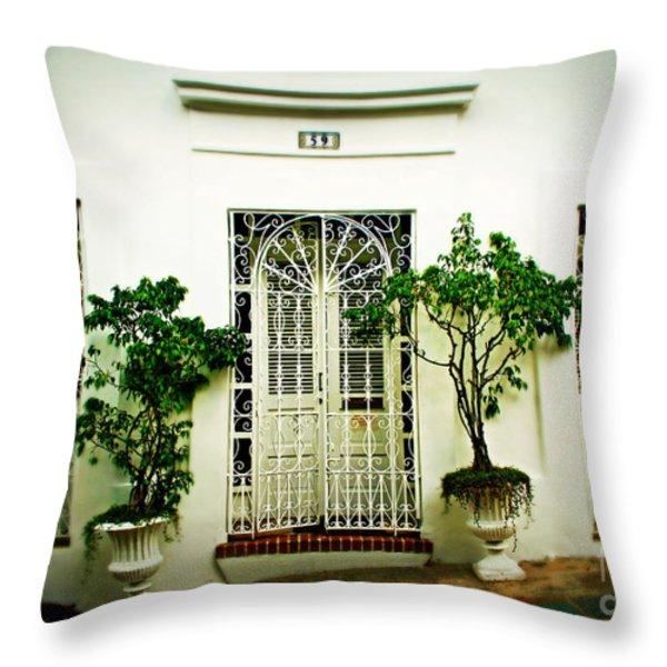 Door 59 Throw Pillow by Perry Webster