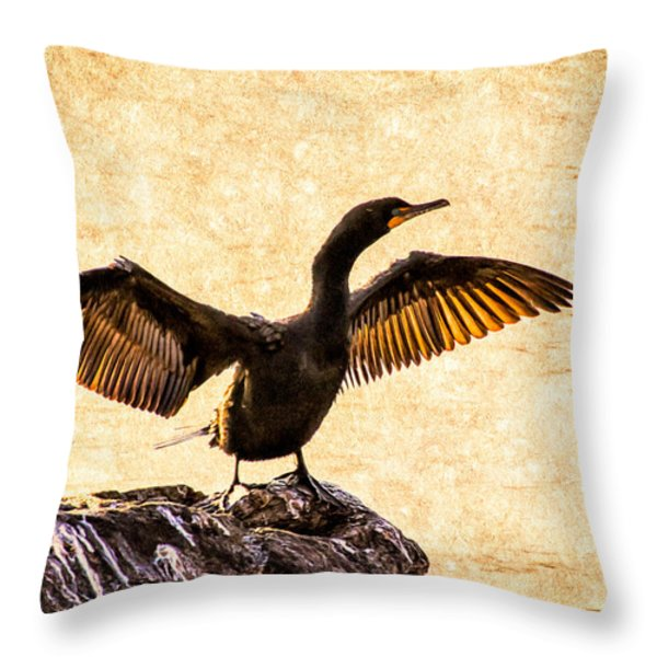 Double-crested Cormorant Throw Pillow by Bob Orsillo