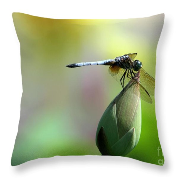 Dragonfly in Wonderland Throw Pillow by Sabrina L Ryan