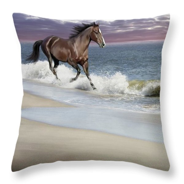 Dreamer On The Beach Throw Pillow by Barbara Hymer