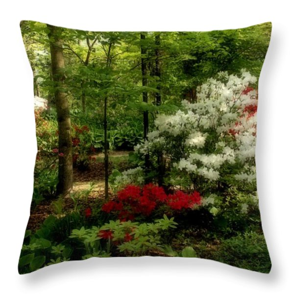 Dreaming Of Spring Throw Pillow by Sandy Keeton