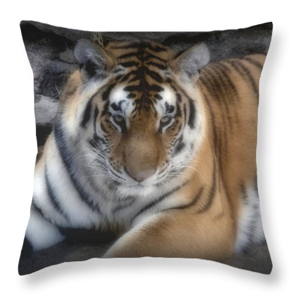 Dreamy Tiger Throw Pillow by Sandy Keeton