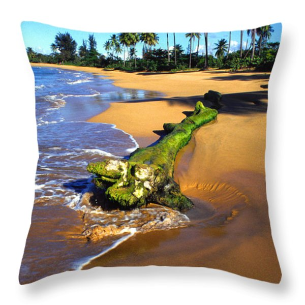 Driftwood And Palm Trees Throw Pillow by Thomas R Fletcher