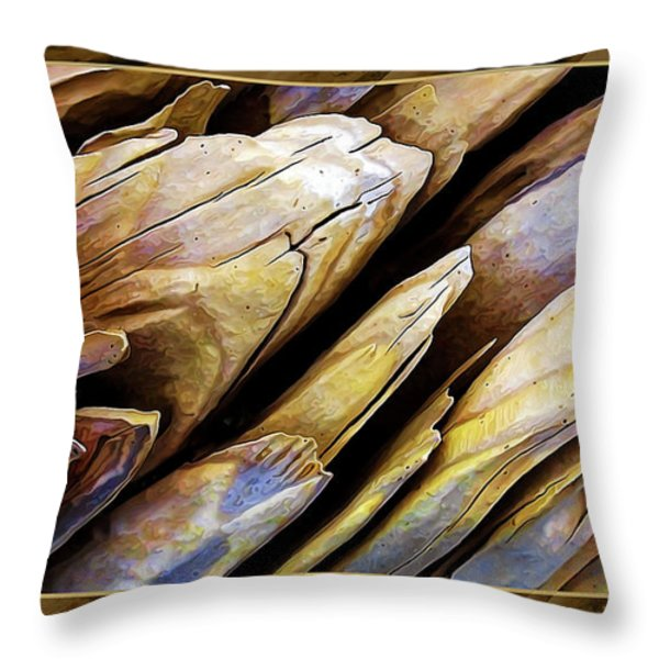 Driftwood Edges Throw Pillow by Bill Caldwell -        ABeautifulSky Photography
