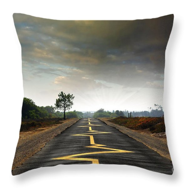 Drive Safely Throw Pillow by Carlos Caetano