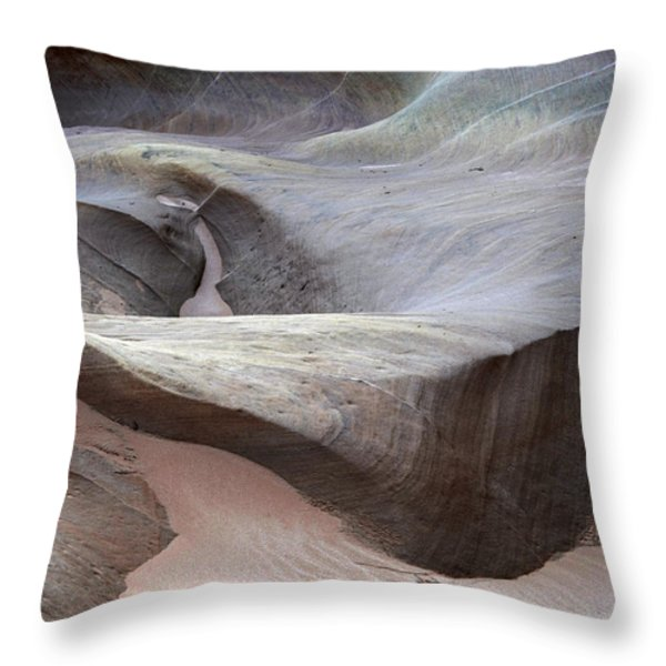 Dry Creek Throw Pillow by Bob Christopher